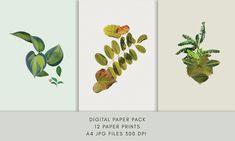 Digital Pack Botanical Collage Plant Portrait Downloadable A4 Digital Prints Collage, Soft Colors, A4, Digital Prints, Stationery, Portraits, Plants, Etsy, Soothing Colors