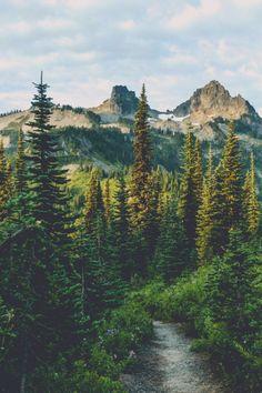 expressions-of-nature:Wonderland Trail, Mount Rainier, Washington by Pedalhead'71
