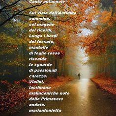 NERO SU BIANCO ...... appunti di viaggio di Maria Antonietta Sechi: Poesia...canto autunnale
