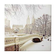 Central Park in New York at Christmas, inspiration for Chloe and Hunter in Just Home for the Holidays, a #Christmas #romancenovella and #7 of the #FlatironFiveFitness series of contemporary romances by #DeborahCooke New York Winter, New York Snow, Nyc Snow, Winter In Nyc, Winter Park, New York City Central Park, Park In New York, New York Weihnachten, Travel