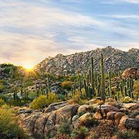 Scottsdale Public Art http://www.realestateforsaleinaz.com/blog/5-phoenix-musuems-you-should-consider-visiting/