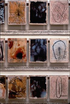 Vulva's Morphia, Total Wall Installation: x cm. Each panel x 28 cm. Carolee Schneemann, Gender Issues, Vagina, Wall Installation, Artist, Photographs, Presents, Collage, Image