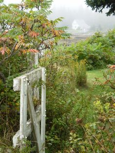 Waning summer days on the Maine coast. Maine New England, Garden Gates, Outdoor Fun, The Good Place, Beautiful Places, Coastal, Scenery, White Fence, Outdoor Structures