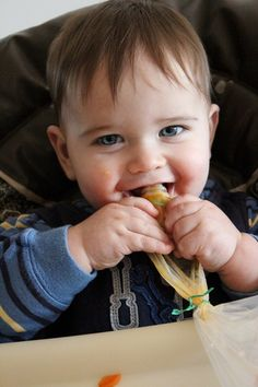 Guest post from Elise Baby food pouches came out a few years ago when my now four year old was a toddler. They were immediately a huge hit with many of my mommy friends. I have always made my own baby food, so I never bothered to purchase any of the store-bought pouches.