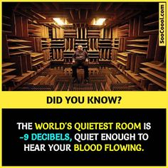 20 Cool Facts ( to Enhance your Knowledge and Make you Smart - Soocoool Wierd Facts, Wow Facts, Intresting Facts, Real Facts, Wtf Fun Facts, True Facts, Funny Facts, Random Facts, Weird
