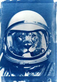 graphic art illustration lion Houston, this is Space Big Cat...