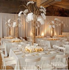 White & gold color scheme wedding