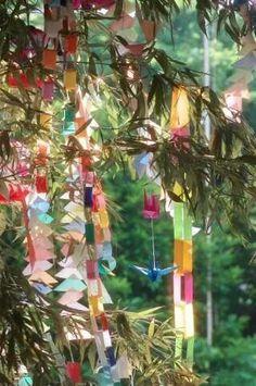 star festival in japan