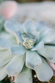 love this ring?