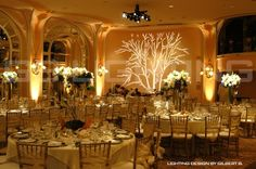 Wedding lighting this would be perfect at my reception