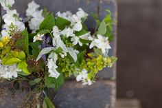 Euphoric Flowers bouquet design for British Flowers Week 2014 using British Flowering Foliage of purple cotinus, silver stachys byzantine, g...