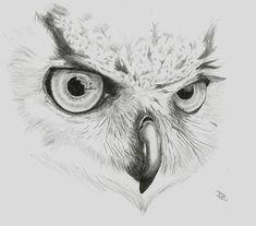 Buho por EXIDE - Animales | Dibujando.net