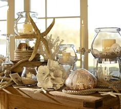 The beauty of the neutral colors of the beach from Pottery Barn. Oh... and a beautiful touch of Mercury glass in the sea urchin!