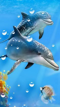 Enjoy WackyHabitat curated Sea Art SeaArt Just for Fun and Sharing! Dolphin Photos, Dolphin Art, Beautiful Landscape Wallpaper, Beautiful Gif, Sea Art, Ocean Creatures, Cute Cartoon Wallpapers, Ocean Life, Michel