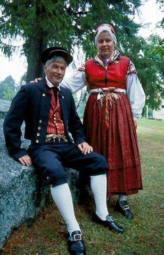 Replot-Björköby Replot, Österbotten Folkdräkter - Dräktbyrå - Brage Folk Costume, Costumes, Media Design, Traditional Dresses, Native Country, Folk Clothing, How To Wear, Clothes, School