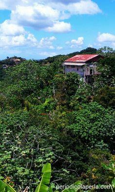 Maricao, Puerto Rico [Foto: Omar Alfonso   La Perla del Sur]