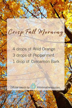 Strategies For essential oil blends crisp fall morning wild orange peppermint cinnamon bark - Christmas Deesserts