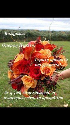 Good Morning, Diy And Crafts, Plants, Decor, Buen Dia, Decoration, Bonjour, Plant, Decorating