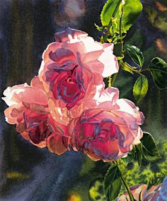 Roses in the Morning by Carol Evans.   Amazing Watercolor!