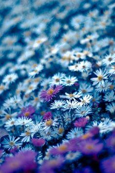 Peaceful.  Cool blue.