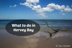 What to do in Hervey Bay