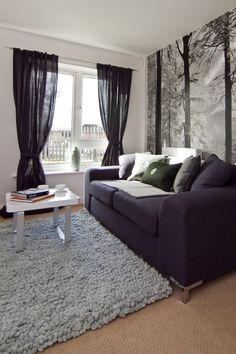 white-and-grey-living-room-ideas