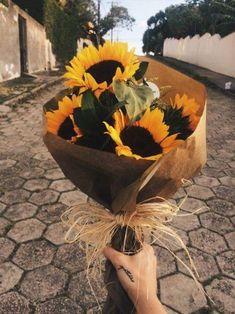 A sunflower field is like a sky with a thousand suns. A sunflower field is like a sky with a thousand suns.