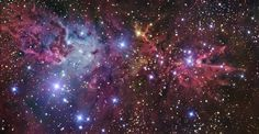 NGC 2264: The Christmas Tree Cluster, Fox Fur Nebula and Cone Nebula in Monoceros www.cosmotography.com