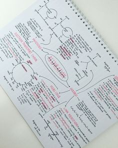 biology aesthetic zoe studies signing out - biology Biology Test, A Level Biology, Revision Notes, Study Notes, Pretty Notes, Good Notes, Colegio Ideas, Note Taking Tips, School Study Tips