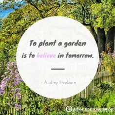 153 Best Tree & Nature Quotes images | Nature quotes, Tree ...