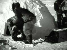 """""""Nanuk el esquimal"""", Flaherty. Aclamadísimo documental, pionero y modelo, que narra las duras condiciones de vida de una familia esquimal del ártico. La detallada realidad de esta raza, que vive en medio de un clima casi imposible para el resto de los humanos, es lo que plasmó el antropólogo, explorador y cartógrafo Robert J."""
