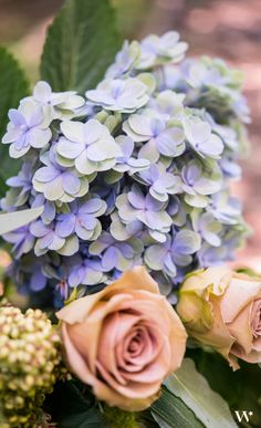 Hydrangeas are the perfect addition to any wedding bouquet. Add a varying color to add visual interest and appeal to your wedding flowers.