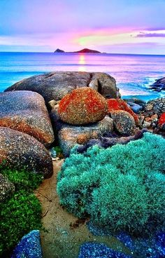 Whisky Bay,Wilsons Promontory National Park Magic Places, Places To Visit, All Nature, Amazing Nature, Dream Vacations, Vacation Spots, Places Around The World, Around The Worlds, Beautiful World