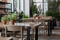 Ana La Santa Restaurante Madrid. En el hotel ME