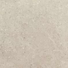 Dignitary Notable Beige DR09 Porcelain Floor and Wall Tile available in multiple large format sizes in Unpolished, Light Polished, & Textured finishes.