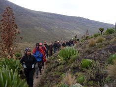 Mount Kilimanjaro expedition by Meru Wellness Retreat Lodge Camp Safari in Tanzania www.meruwellnessretreat.com