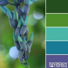 color palettes by proteamundi
