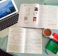 I should be studying... • 2/12/15 Studying ophthalmology before I start...