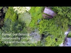 Permaculture Magazine uk, Part 1 of video series Living with the Land. This one, forest gardening with Martin Crawford. Recommended by seedysundayeb.org.uk. Eastbourne's seed saving movement. https://timetogetone.myshopify.com/