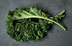 Kale is a great crop for beginner and experienced growers alike, but there are a few essential tricks to help ensure an abundant yield.