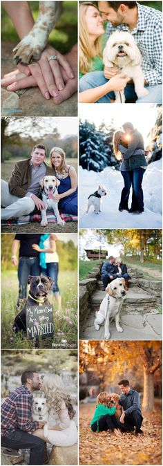 Engagement Photos » 15 Oh So Romantic Engagement Photos With Dogs» ❤️Read More: http://www.weddinginclude.com/2015/08/15-oh-so-romantic-engagement-photos-with-dogs/