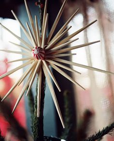 christmas tree star. chinese food takeout chopsticks hot glued to a cardboard round.
