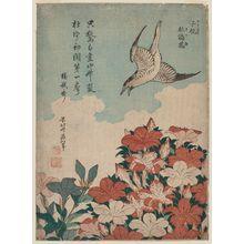 Katsushika Hokusai: Cuckoo and Azaleas (Hototogisu, satsuki), from an untitled series known as Small Flowers - Museum of Fine Arts