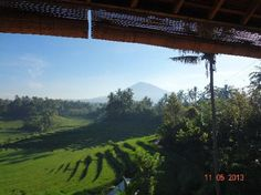 View from the restaurant Warung Tepi Sawah at Belimbing, Bali Mt Batu Karu in background.  Wonderful peaceful views, cool mountain air, great food.