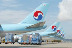Korean Airlines, Air Birds, Airplane Fighter, Jumbo Jet, Cargo Airlines, Commercial Aircraft, World Pictures, Military Aircraft, Fighter Jets