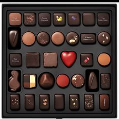 Pierre Marcolini Belgian chocolatier has passion for beauty..