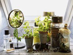 Una casa reciclada6