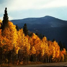 Crested Butte, Colorado   photo by tdoornbos