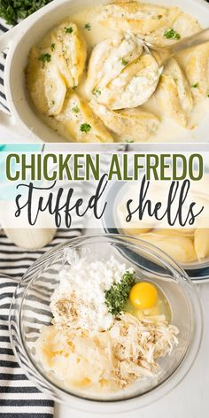 Chicken Alfredo Stuffed Shells are a savory pasta dish filled with the classic Chicken Alfredo flavors. Using either homemade or jarred Alfredo sauce it pairs perfectly with the filling made up of shredded chicken parmesan cheese and cottage cheese. Homemade Chicken Alfredo, Chicken Alfredo Stuffed Shells, Cheese Stuffed Shells, Stuffed Shells Recipe, Alfredo Chicken, Stuffed Shells Filling, Broccoli Alfredo, Chicken Broccoli, Instant Pot