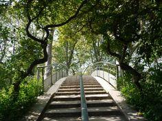 escalier parc bercy paris
